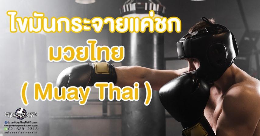 ไขมันกระจายแค่ชก มวยไทย ( Muay Thai)