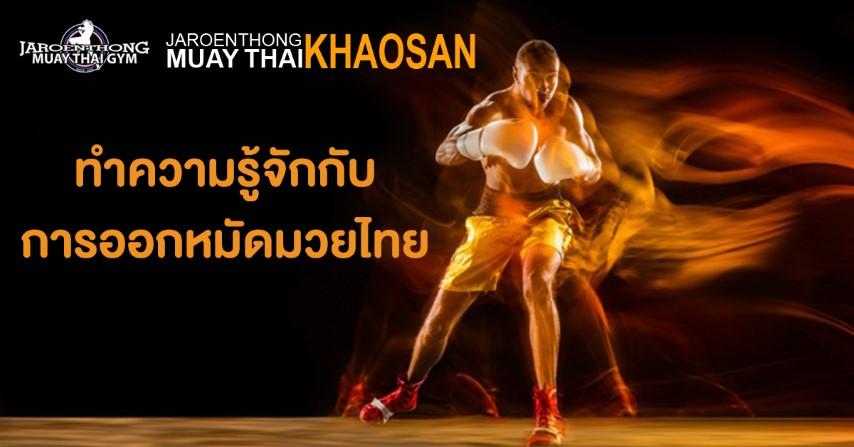 ทำความรู้จักกับการออกหมัดมวยไทย