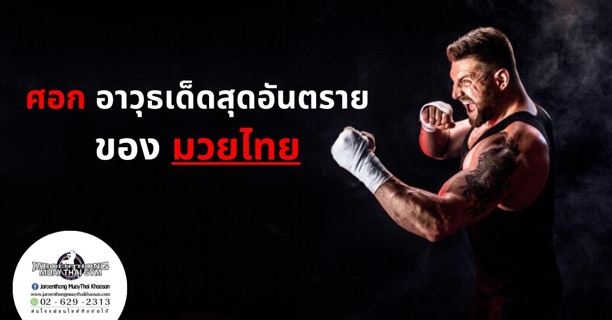 ศอก อาวุธเด็ดสุดอันตรายของ มวยไทย